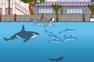 鲨鱼的复仇中文版